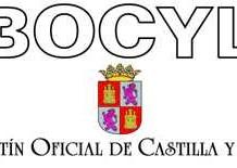 Plantillas definitivas 2015 BOCYL