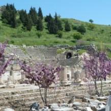 Primaveras grecorromanas 2015